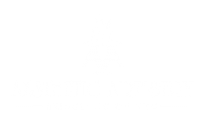 aesthetic-artistry_logo-medspa-nyc